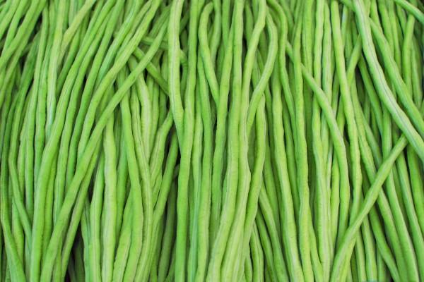 有一种蔬菜,外表看起来铁骨铮铮,但吃起来却酸爽可口,你知道吗