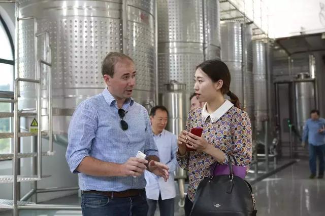 葡萄酒搭配中餐是异国恋?2019北京·房山国际葡萄酒大赛正式启动