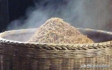 唐三镜张思漫:传统稻谷酒酿造工艺 谷酒酿酒方法