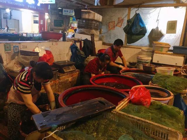 早上6点的重庆菜市场,我看到了生活最真实的模样