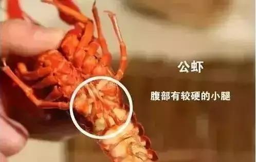 嗨!在南京你真的懂吃小龙虾吗?