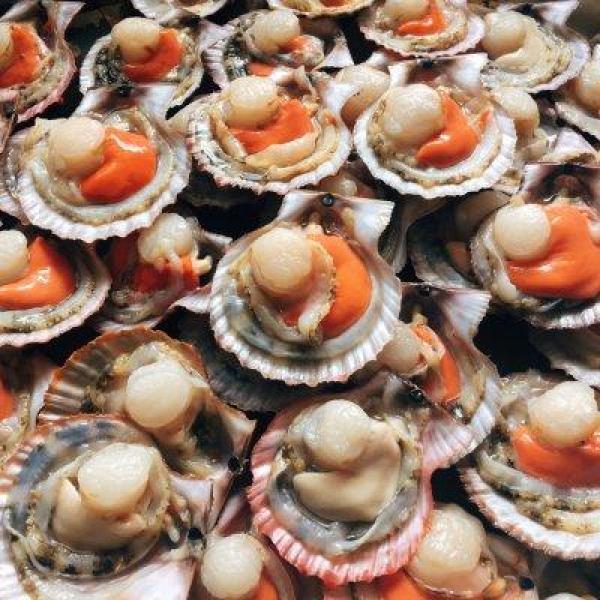 金银蒜蒸红扇贝这样做,手残党也能当大厨