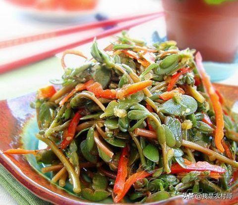 河南人喜欢吃的一种菜,离开家乡想吃都吃不到
