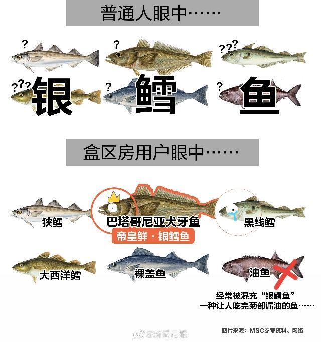 """如何分辨""""真假""""三文鱼?盒率先公布旗下品牌命名标准"""